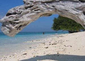 17468-gili-trawangan-lombok-indonesia